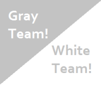 Gray and White Team